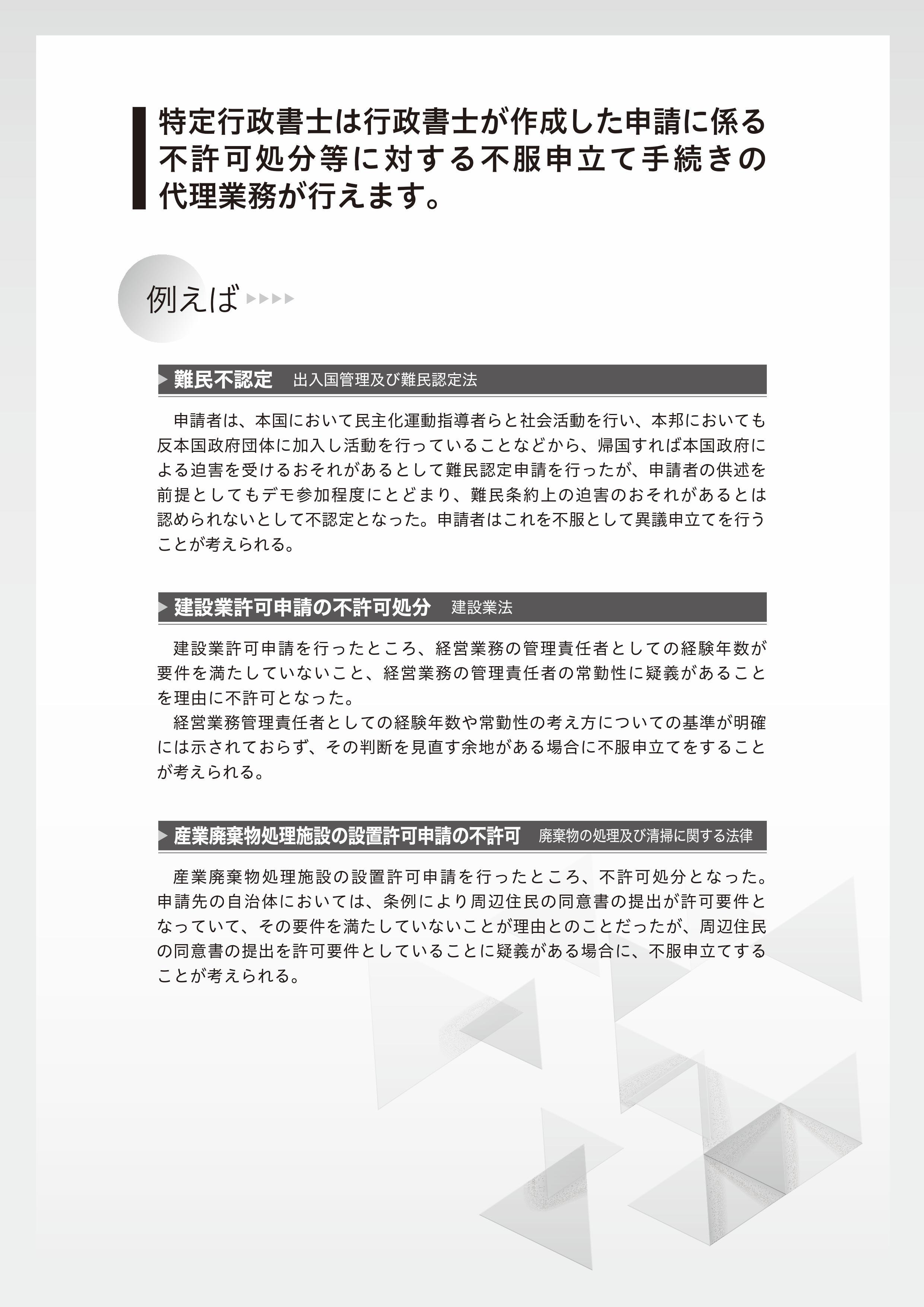 flyer02